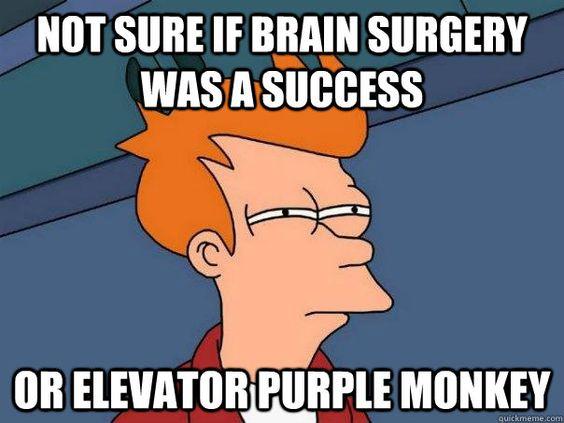 elevatorpurplemonkey